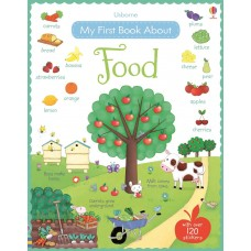 Usborne My First Book About Food
