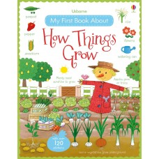 Usborne My First Book About How Things Grow